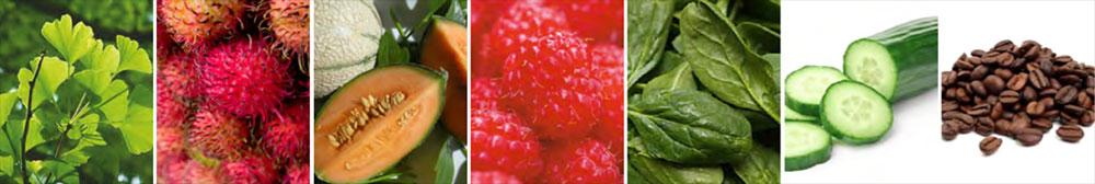 Vita Liberata ingredients